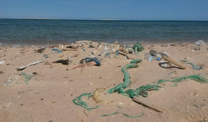 Why You Should Care About Ocean Plastic Pollution